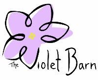Bristol's Lollipop  - The Violet Barn - African Violets and More